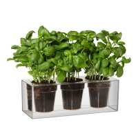 Self-Watering Clear Cube Planter - IPPINKA