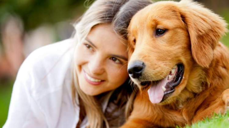 241252g-ways-dogs-help-humans-be-healthy-and-happy