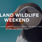 Island Bioblitz — head offshore for a wild weekend!
