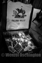 Fallinn Wolff - eine Reise in die Welt der Märchen