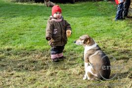 Der Hund, der beste Freund des Menschen