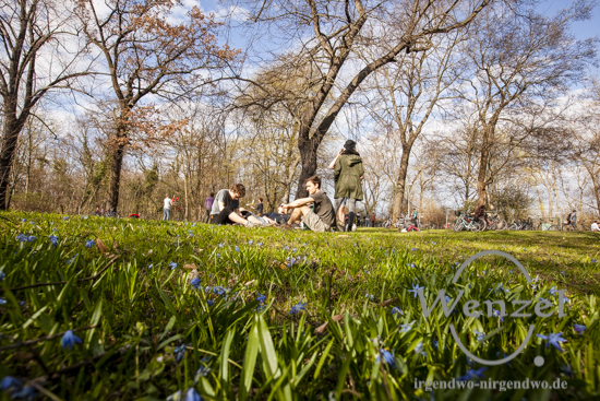 Frühling in Magdeburg - Spaziergang durch den Glacis Park