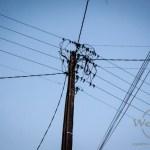 Wenn der Strom teurer wird