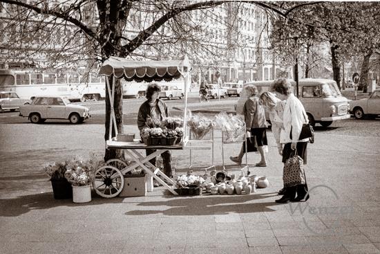 Blumenstand Ecke Wilhelm-Pieck-Alle / Otto-von-Guericke-Straße