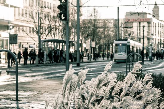 Unterwegs in Magdeburg - Januar 2016 - Breiter Weg