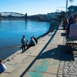 Frühling in Magdeburg –  zwischen Hubbrücke und Strombrücke