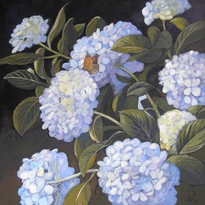 hydrangeas-and-butterfly-gb-acrylic-on-canvas-small-12-x-12-in-2009bmp