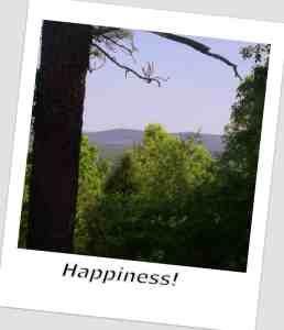 Happiness Polaroid