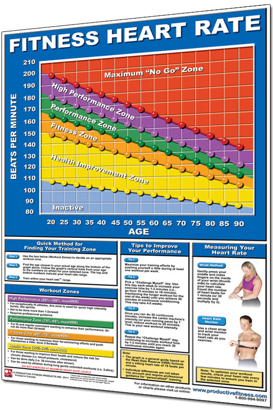 Productive Fitness 24u201d x 36u201d Laminated Fitness Poster \/ Wall Chart - rate chart
