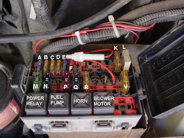 95 Georgieboy Cuisemaster, no power to fuel pump where does power