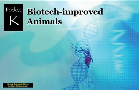New ISAAA Pocket K on Biotech-improved Animals- Crop Biotech Update