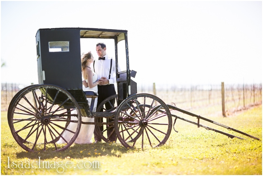 Holland Marsh Wineries engagement