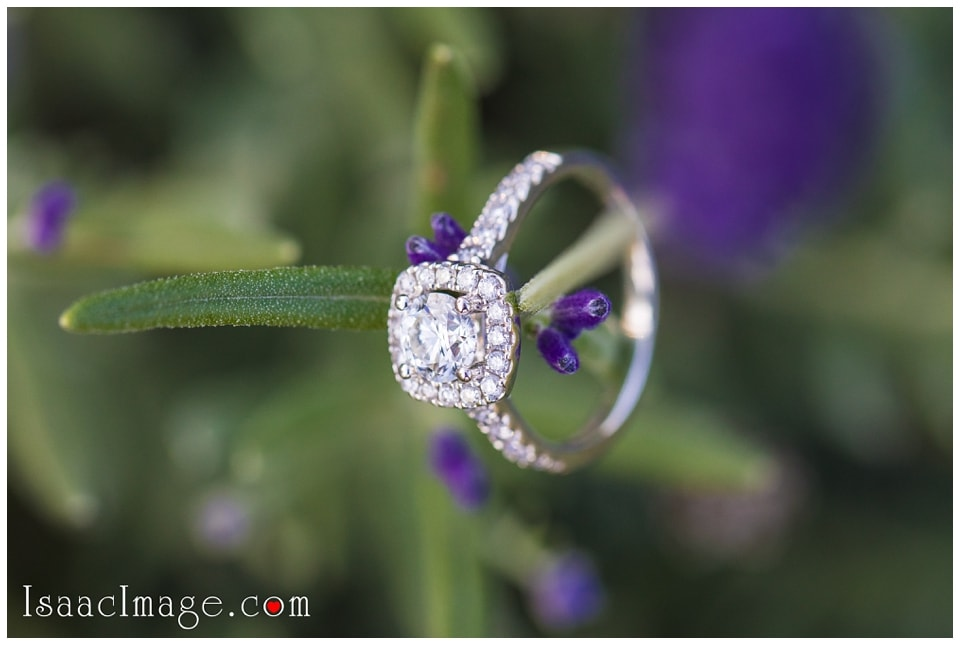 Bonnieheath estate lavender winery Engagement_3412.jpg