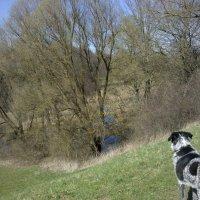 Isarhunderunde 5: Aubinger Lohe