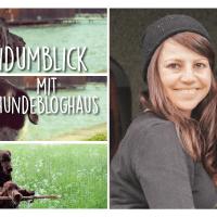Der Hundumblick: 6 Fragen an Danni vom Hundebloghaus