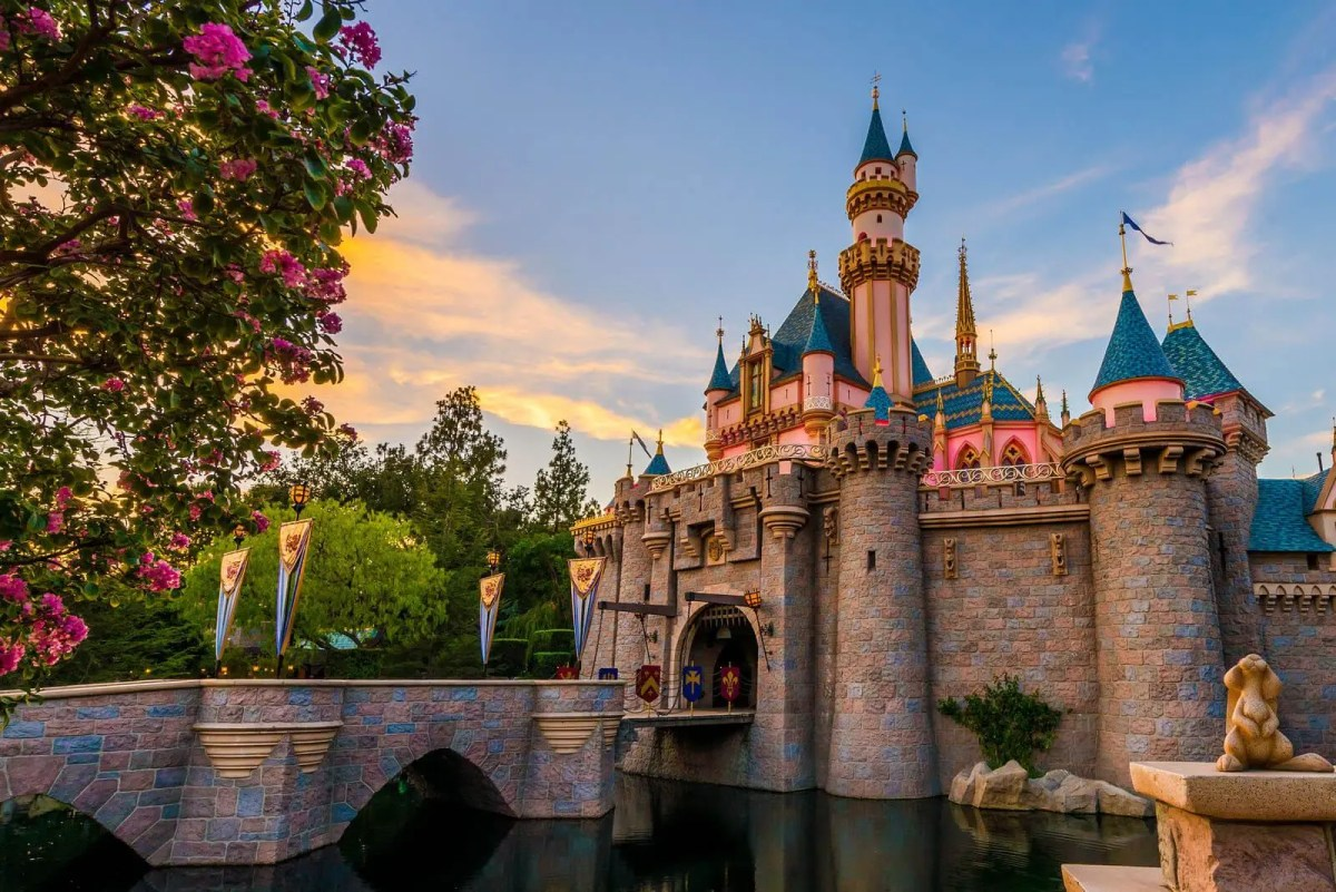Disneyland Crowd Tracker – Is It Packed? – Real-Time Crowd ...