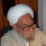 ayatollah_ibrahim_amini_2