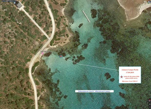 Asinara - localizzazione di Pinna Nobilis non più vitale