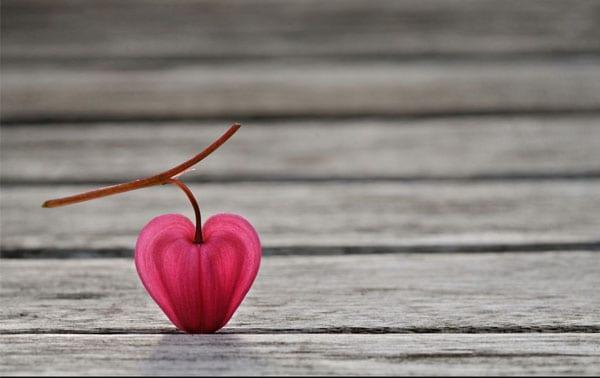 Natural heart photography