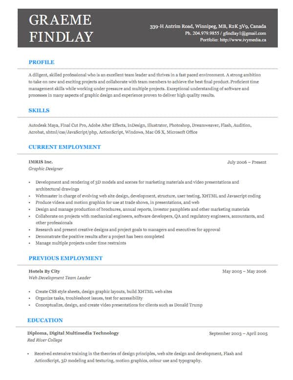 Professional experience essay