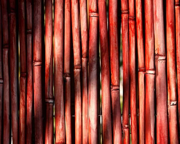 Red Bamboo Textures