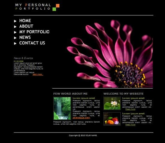 Free Flash Personal Portfolio Website