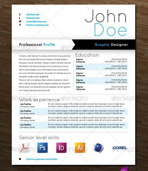 modern professional cv samples
