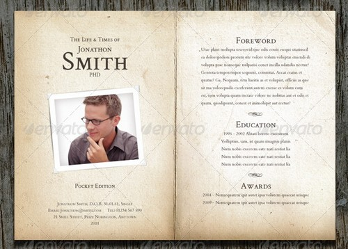modern and professional resume template examples 6