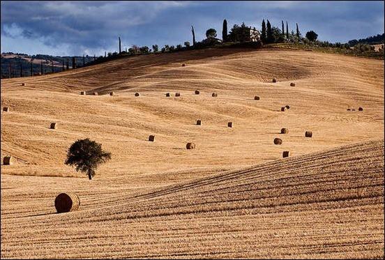 tuscan-summer-memories