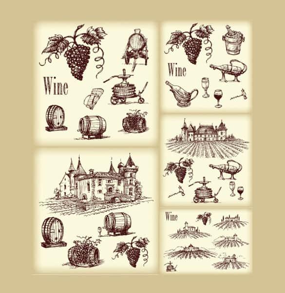 Hand Drawn Vineyard Wine Elements