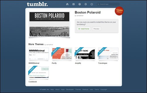 Boston-Polariod best tumblr themes