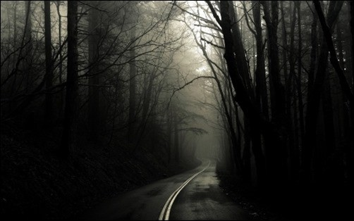 Dark-Road-Forest-black-desktop-wallpaper