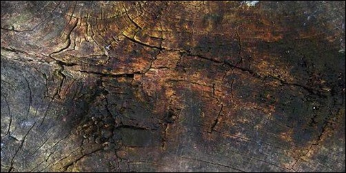 Grunge-Wood