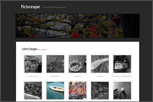Picturesque WordPress Photography Themes