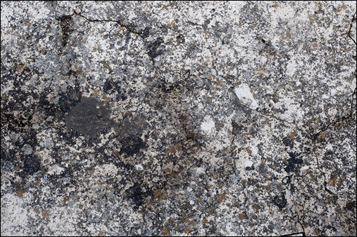 Porous-Stone-Texture-with-Moss-and-Lichens-stone-texture