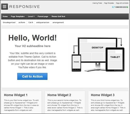 Responsive responsive WordPress theme