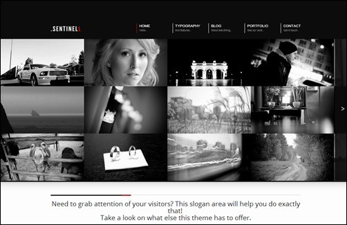 Sentinell responsive WordPress theme