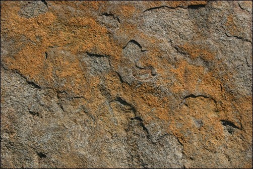 Stone-31-stone-texture