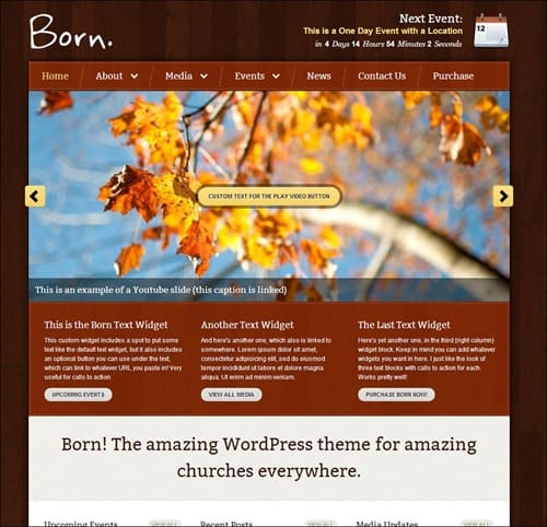 born wordpress church themes