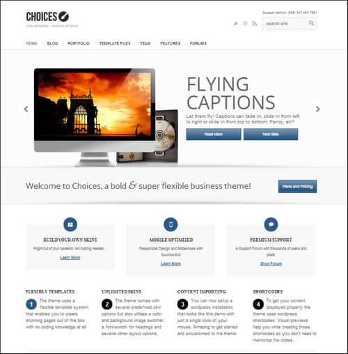 choices simple wordpress themes
