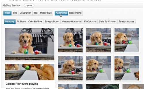 WordPress Gallery Plugins complete-gallert-manager