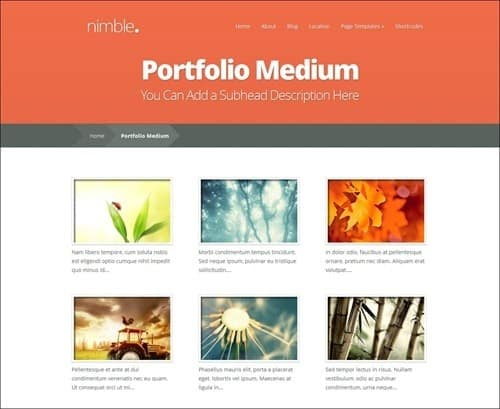 nimble simple wordpress themes