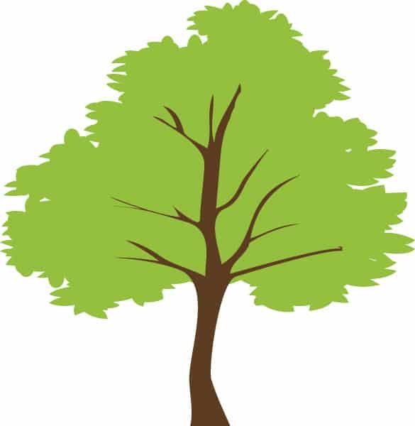 Simple Green Tree Vector Illustration