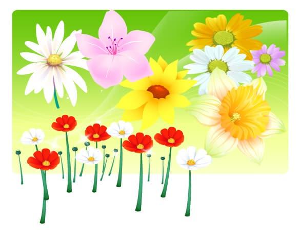 Spring Flower Bouquet Vector Illustration
