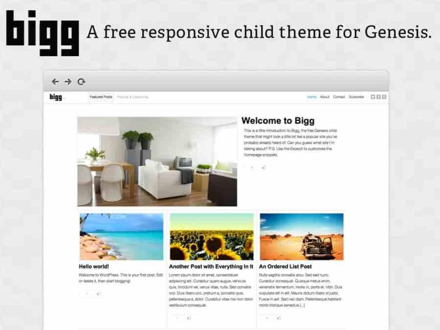 bigg-free-responsive-wordpress-theme