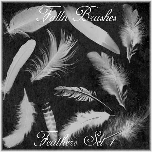 Feathers_Brushes_Set_1_by_Falln_Brushes