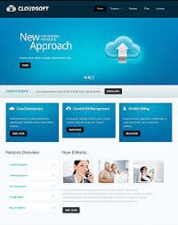 Software wordpress theme