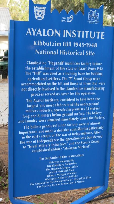 Ayalon Institute
