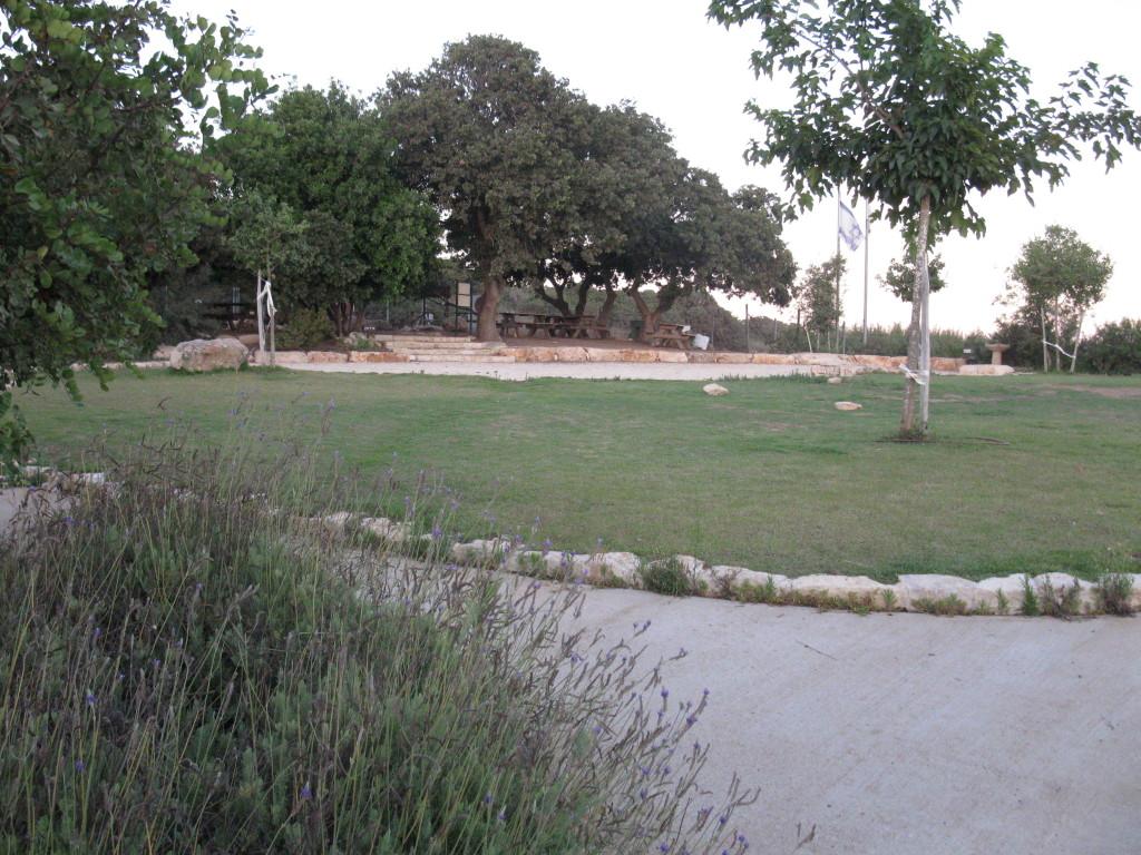 Park Ehud Efrati