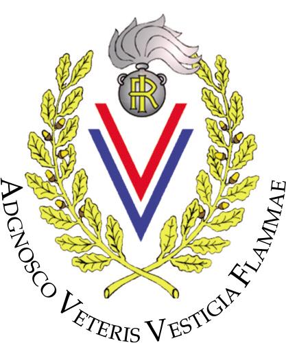 """Associazione V.V.A.E. """" ALAMARI"""